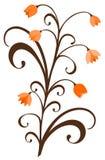 Ornement avec des fleurs d'automne Image stock