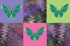 Ornement avec des papillons Photo libre de droits
