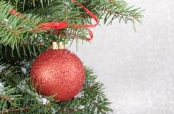 Ornement d'arbre de Noël Photographie stock