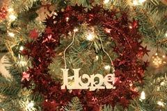 Ornement d'espoir. Photo libre de droits