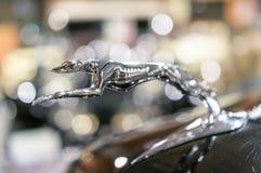 Ornement de capot de Jaguar photographie stock libre de droits
