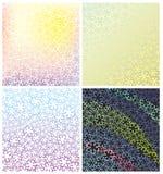 Ornement de dentelle des couleurs Photographie stock
