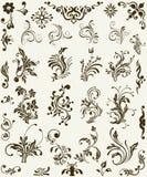 Ornement de silhouette de fleur Images stock