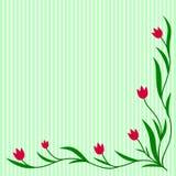 Ornement de tulipes Images libres de droits