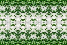 Ornement des feuilles de vert en glace Photographie stock