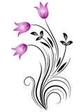 Ornement floral décoratif Images stock