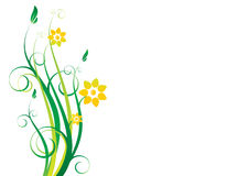 Ornement floral de vecteur Images stock