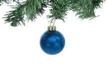 Ornement givré bleu de Noël avec des branchements d'isolement Image stock