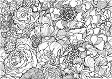 Ornement noir et blanc de fleur Image stock