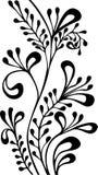 Ornement ornemental noir et blanc de vecteur Photographie stock