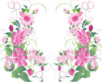 Ornement rose et vert de fleur Images libres de droits