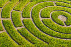 Ornemental Garten Stockbilder