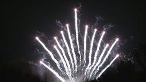 Ornements de feux d'artifice banque de vidéos