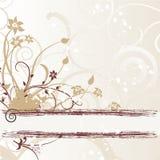 Ornements de fleur Photos libres de droits