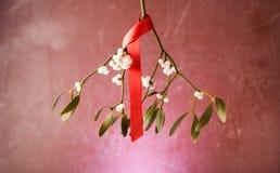 Ornements de gui de Noël avec le ruban rouge sur le fond en bois Image libre de droits
