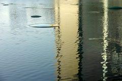 Ornements de l'eau Image libre de droits