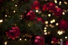 Ornements de Noël dans un arbre Images stock
