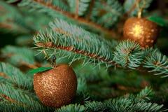Ornements de Noël sur l'arbre de Noël sous tension Images stock