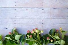 Ornements de Noël sur un fond en bois Image libre de droits