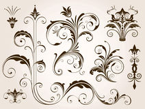 Ornements floraux élégants réglés Photographie stock libre de droits
