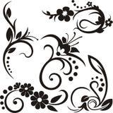 Ornements floraux Image stock