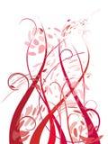 Ornements floraux Photographie stock libre de droits
