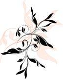 Ornements floraux de vecteur Images libres de droits
