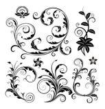 Ornements floraux réglés Image libre de droits