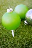 Ornements sur un terrain de golf Photos stock