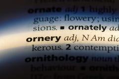 ornery fotografia stock