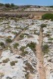 Ornières Malte de chariot de jonction de Clapham Images libres de droits