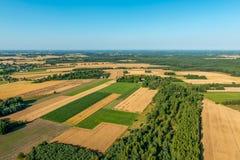 Orni pola i łąki w Mazovia, bezchmurny jasny niebo obrazy royalty free