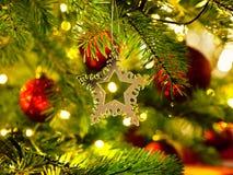 Orni in un albero di Natale Fotografia Stock Libera da Diritti