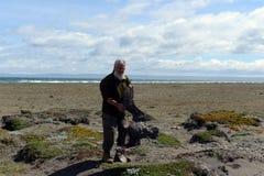 Ornitólogo con un pájaro muerto en el golfo de Inutil Imagen de archivo