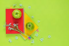 Ornithogalum e cadernos vermelhos e amarelos, maçãs verdes Fotos de Stock