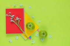 Ornithogalum y cuadernos rojos y amarillos, manzanas verdes Imagen de archivo