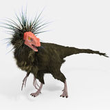 Ornitholestes (dinosaur) Obraz Stock