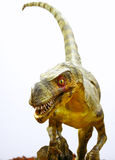 Ornitholestes Dinosaurier auf Weiß Stockfotos