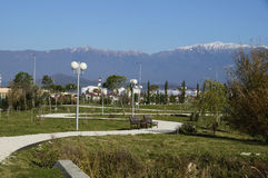 The ornithological park. Ornithological park in the Sochi in winter Stock Photos