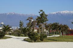 The ornithological park. Ornithological park in the Sochi in winter Stock Image
