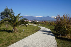 The ornithological park. Ornithological park in the Sochi in winter Stock Photography