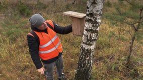 Ornitholoog met vogel het nestelen doos dichtbij berk in bos stock videobeelden