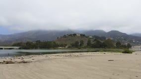 Ornitologia do verão na praia de Malibu fotos de stock