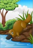 Ornitorrinco de la historieta en cala del bosque ilustración del vector