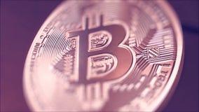 Oro Crypto Bitcoin - BTC de la moneda - moneda del pedazo existencias Moneda crypto de los tiros macros Bitcoin giratorio Monedas almacen de video