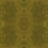 Oro de Complexionem imagen de archivo