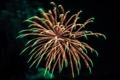 Oro de la celebración de los fuegos artificiales del fuego artificial con los picos verdes Imagenes de archivo