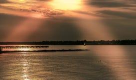 Oro del Chesapeake Imagen de archivo