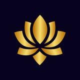 Oro del fiore di Lotus Fotografie Stock Libere da Diritti