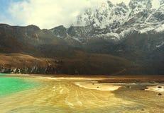 Oro dell'Himalaya fotografie stock libere da diritti